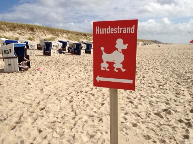 犬連れOKビーチのマーク。